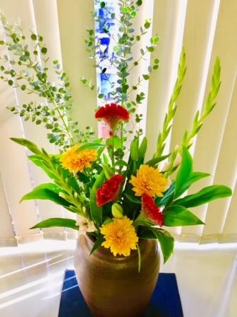 2018年11月5日のえばた歯科の花