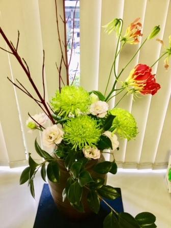 2018年11月26日の週のえばた歯科の花